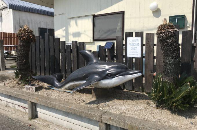イルカの再利用